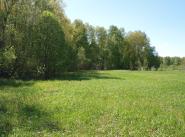 Коттеджный поселок Лесной